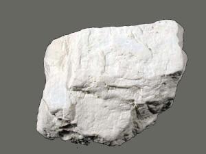 Weisses Diatomit Gestein